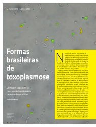Formas brasileiras de toxoplasmose - Revista Pesquisa FAPESP