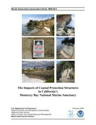 The Impacts of Coastal Protection Structures in California's Monterey ...
