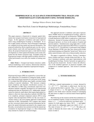 morphological scale-space for hyperspectral images and ...