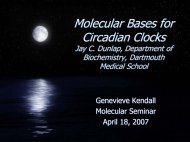 Molecular Bases for Circadian Clocks