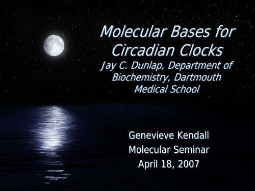 Molecular Bases for Circadian Clocks