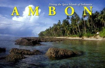 Ambon - X-Ray Magazine
