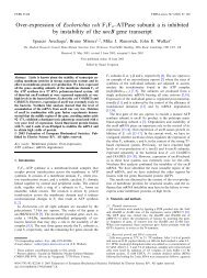 Over-expression of Escherichia coli F 1Fo^ATPase subunit a is ...