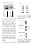 Over-expression of Escherichia coli F 1Fo^ATPase subunit a is ... - Page 3