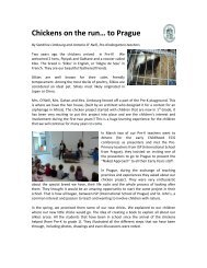 Chickens on the run… to Prague - St. John's International School