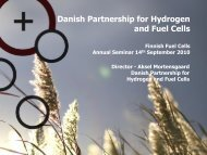 Presentation of Partnership for Hydrogen and Fuel Cells In Denmark