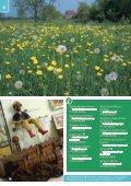 Visit Dorset - Page 6