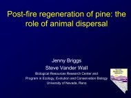 Post-fire Regeneration of Pine The Role of Animal Dispersal.pdf