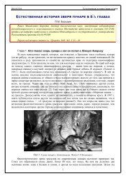 естественная история зверя пунаре в 8 1/2 главах