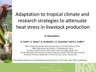 Adaptation to tropical climate and research strategies to ... - Inra