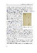 Konstruktion und Simulation eines mathematischen ... - Page 6