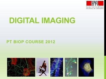 Digital Imaging - BioImaging and Optics platform (PTBIOP) - EPFL