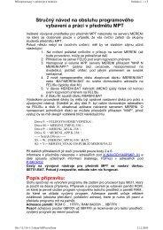 PDF verze