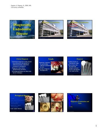 Diagnosing Endodontic Disease - University at Buffalo