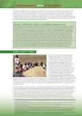 Mejoremos el clima para la igualdad de género también! - Page 2