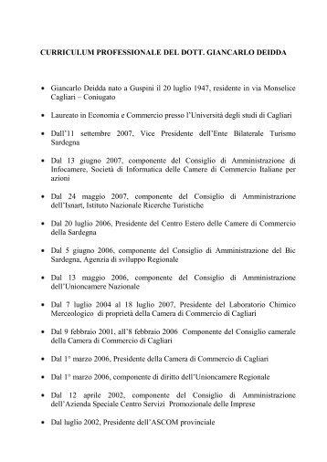 CURRICULUM PROFESSIONALE DEL DOTT - Camera di Commercio