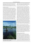 Farm Pond Ecosystems - US Department of Agriculture - Page 6