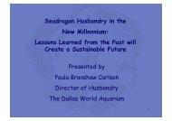 Seadragon husbandry in the new Millenium - International Aquarium ...