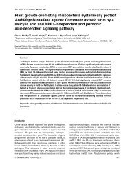 Plant growth-promoting rhizobacteria systemically protect ...