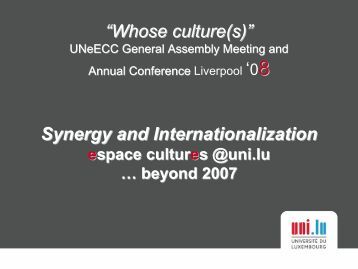 """Whose culture(s)"" Synergy and Internationalization - UNEECC"