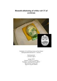 Opgaven [PDF-fil] - Foreningen af Radiografer i Danmark