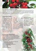 Egyéniség - WEB-SET - Page 3