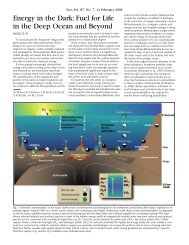 Energy in the Dark: Fuel for Life in the Deep Ocean and Beyond