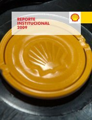 REPORTE INSTITUCIONAL 2009