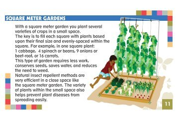 Pocket Guide for School Gardens-Part 2 - 4-H Africa Knowledge ...