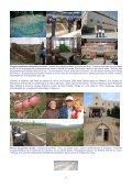 Association Mondiale de la Conservation du Sol et de l´ Eau-AMCSE - Page 5