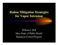 Radon Mitigation Strategies for Vapor Intrusion