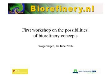 First workshop on the possibilities of biorefinery concepts