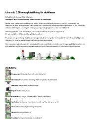 Lärarstöd E.ONs energiutställning för skolklasser Modulerna