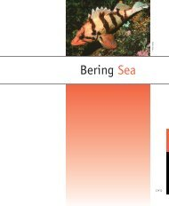 Bering Sea - PICES