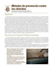 Métodos de prevención contra los chinches