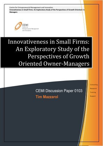 Innovativeness in Small Firms: An Exploratory Study of the ... - CEMI