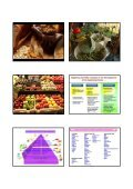 Current Research on Functional Foods and Brain - Neuroscience ... - Page 4