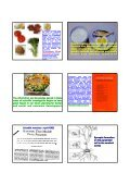 Current Research on Functional Foods and Brain - Neuroscience ... - Page 6