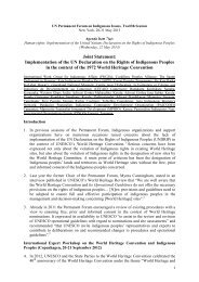 Download joint statement about implementation of UNDRIP ... - iwgia