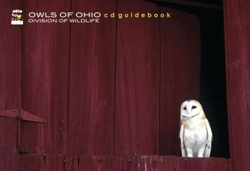 Owls of Ohio - Ohio Department of Natural Resources