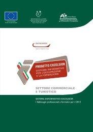 Settore Commerciale- I fabbisogni professionali e formativi per il 2012