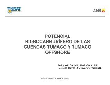 PhD Fabio Cediel (PDF)