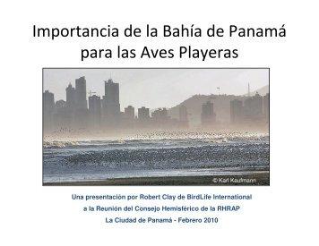 La Importancia de la Bahía de Panamá para las Aves Playeras