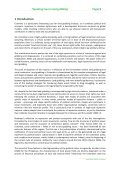 LDPI Working Paper - ISS - Page 5