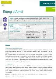 Etang d'Amel - Agence de l'Eau Rhin-Meuse