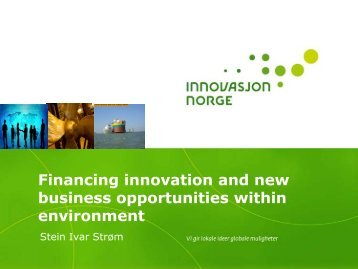 Financing innovation and new business opportunities within ...