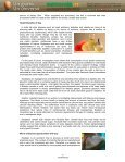 NUTRITIONAL AND HEALTH BENEFITS OF ... - Mercosoja 2011 - Page 2