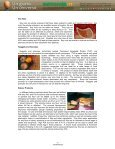 NUTRITIONAL AND HEALTH BENEFITS OF ... - Mercosoja 2011 - Page 5