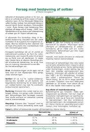 Forsøg med bestøvning af solbær - Økologisk Rådgivning