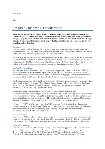 PM - Om rabies hos svenska fladdermöss - SVA